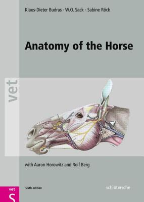 Anatomy of the Horse By Budras, Klaus Dieter/ Sack, W. O.